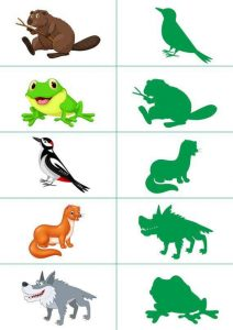 forest animals shadow matching
