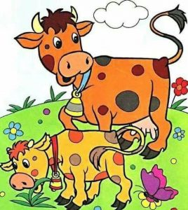 kindergarten cow coloring pages