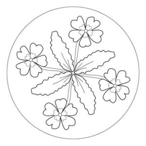 mandala coloring sheet (1)
