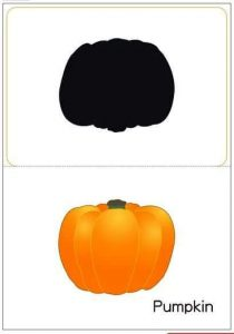 pumpkin shadow matching