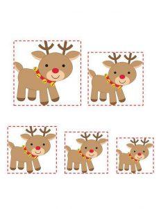 reindeer size sequencing