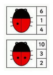 ladybug-counting10