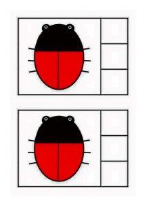 ladybug-counting11