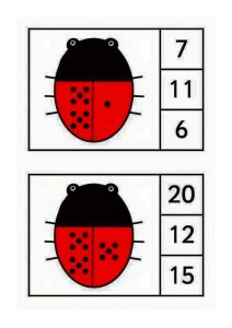 ladybug-counting2
