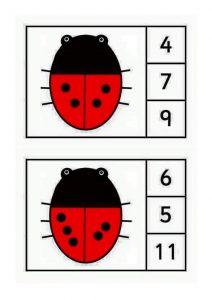 ladybug-counting8