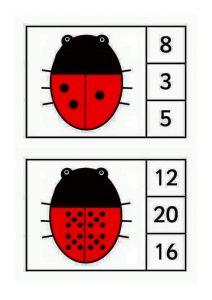 ladybug-counting9