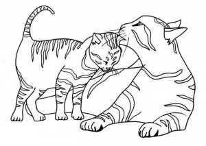 cat-coloring-pages-10