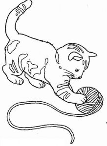 cat-coloring-pages-12