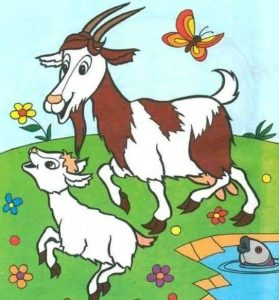 goat-coloring-pages-1