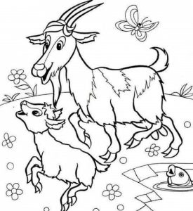goat-coloring-pages-2