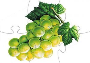 grape-jigsaw-puzzle-for-kids