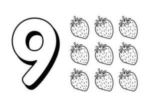 number-nine-flashcads