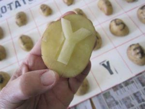 potato-stamp-art-activities-23