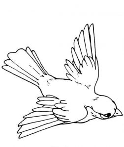 preschool-bird-coloring-pages-11
