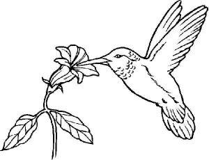 preschool-bird-coloring-pages-7