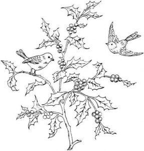 preschool-bird-coloring-pages-9