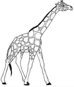 preschool-giraffe-coloring-pages-2