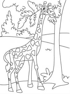 preschool-giraffe-coloring-pages-3