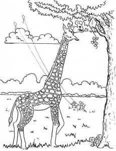 preschool-giraffe-coloring-pages-5