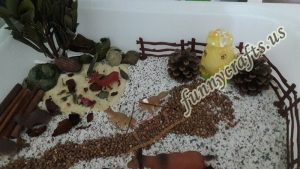 sensory-table-ideas-3