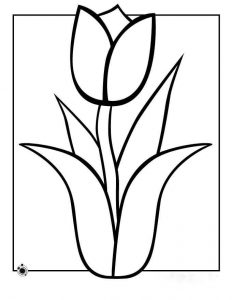 tulips-coloring-pages-4