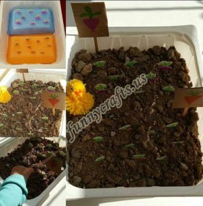 garden-sensory-bin-ideas-for-kids