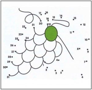 grape-dot-to-dot-coloring-pages