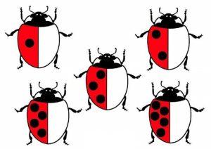 ladybug-counting-free-printables-2