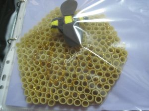 pasta-bee-craft-idea
