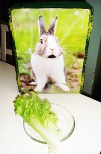 toddlers-bunny-craft-2