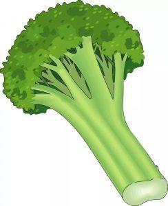 vegetables-free-printable-14