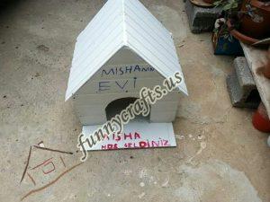 cardboard-cat-house-craft-ideas-10