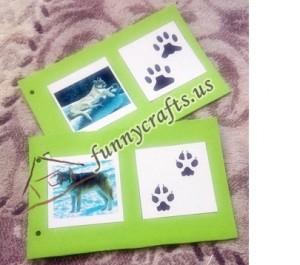 animal_footprint_activities