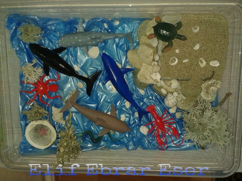 Photo of Beach Sensory Bin