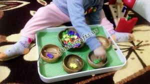 categorizing_activities_for_preschoolers