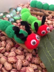 caterpillar_from_pompom