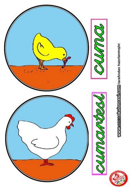 chicken_theme_activities