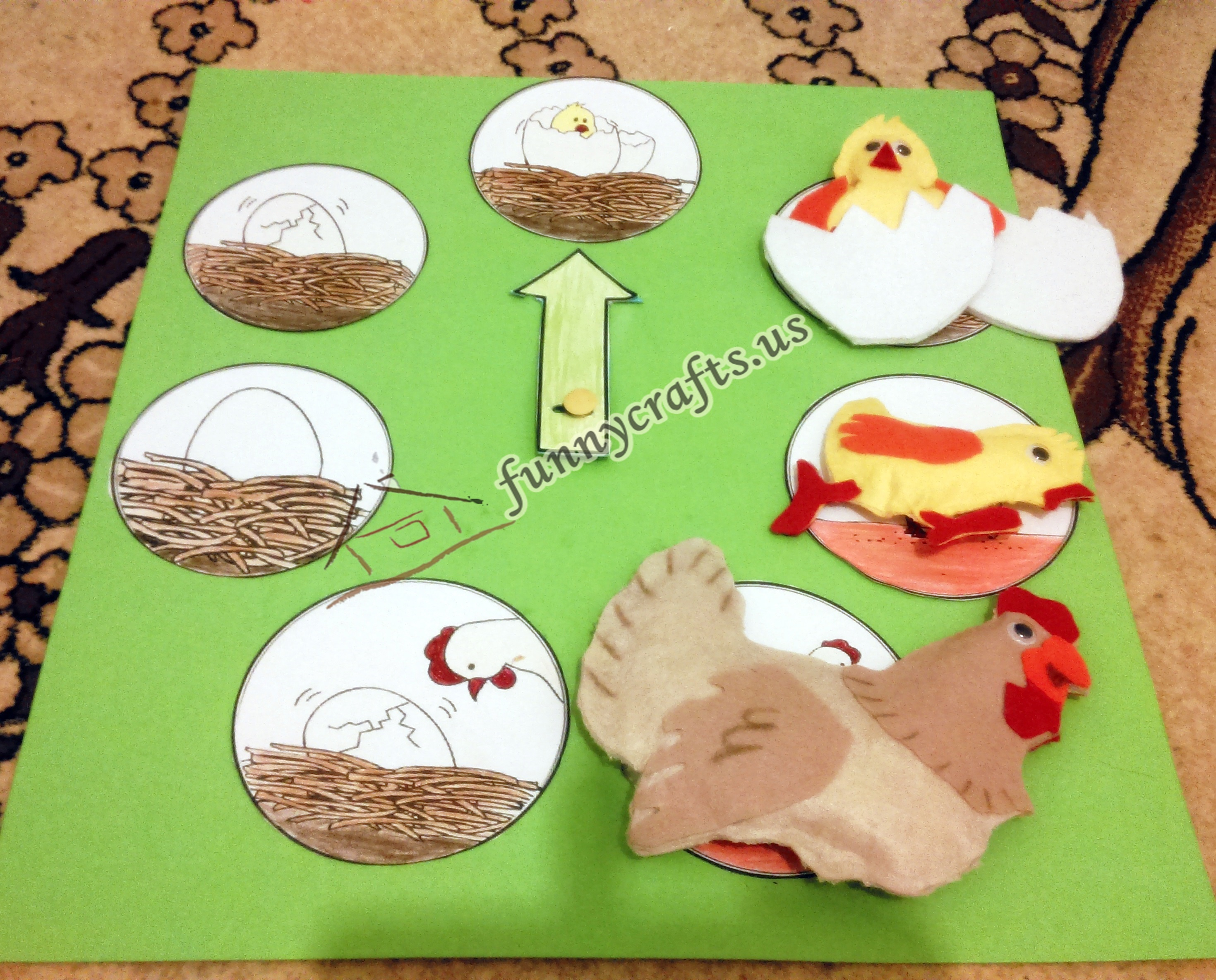 Life Cycle Of A Chicken on Seasons Preschool Activities And Crafts 4