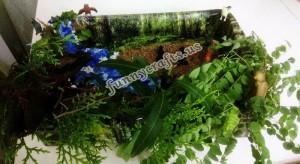 how_to_make_rainforest_sensory_box
