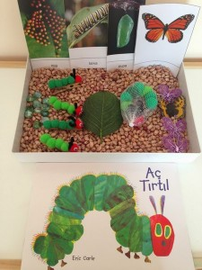 hungry_caterpillar_book