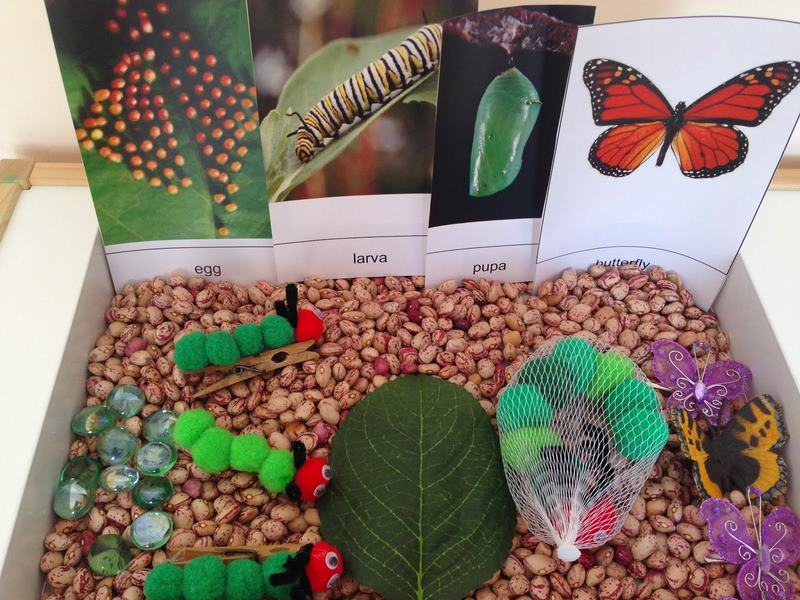 hungry_caterpillar_sensory_table