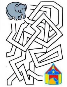 labyrinthines_ elephant