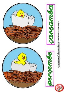 montessori_chicken_theme