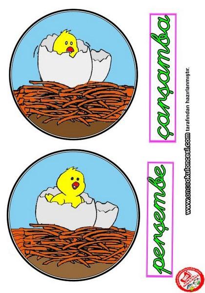 montessori_chicken_theme