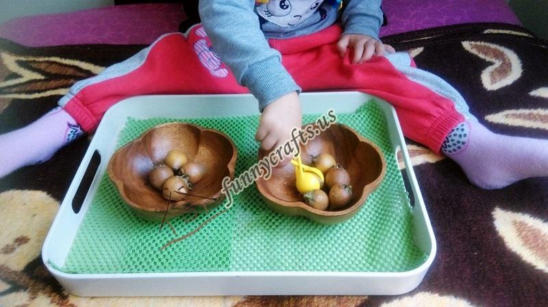montessori_transfer_activities