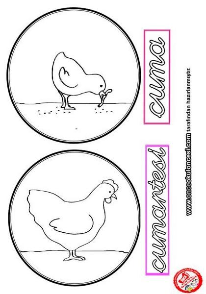 preschool_chicken_activities
