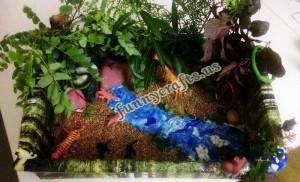 rainforest_habitat_diorama