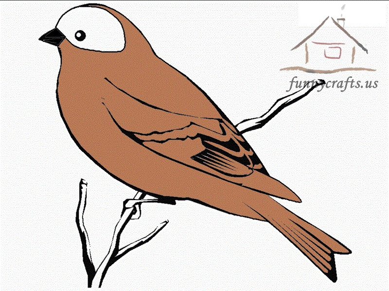 brown_bird