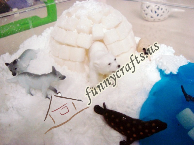 learning_about_polar_animals_through_sensory_play