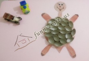 preschool_turtle_funny_activities